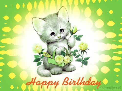 Verjaardag E Cards Verjaardagskaarten