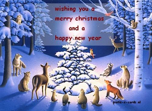 Grappige Kerstkaarten E Cards.Gratis De Leukste E Cards Versturen Kerstmis Kerstwens